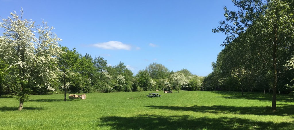 Main Meadow Camping – Plenty of space for the kids